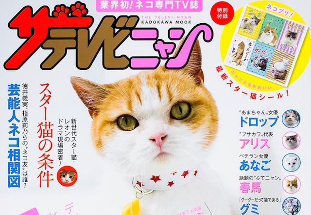 猫のテレビ専門誌「ザテレビニャン」が発売されてるにゃ〜