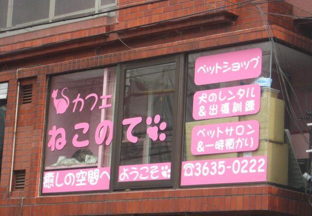 錦糸町 猫カフェ ねこのて