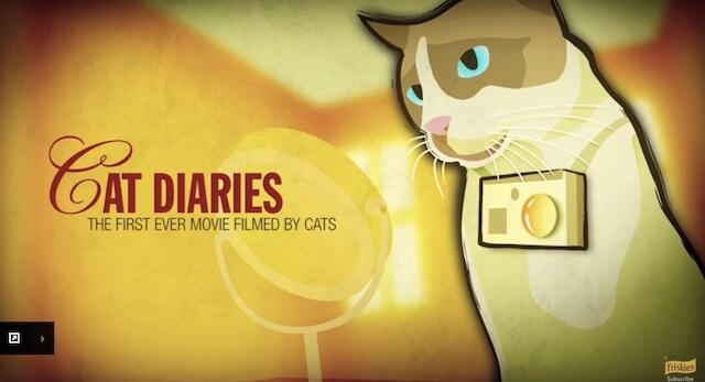 撮影方法 フリスキーによる猫目線のカメラ動画