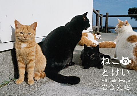 岩合光昭さんによるミニ写真展「ねこのとけい」