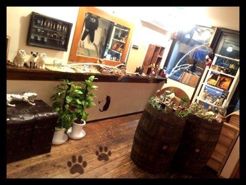 名古屋 栄の黒猫cafe