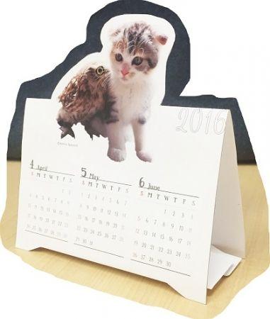 猫とフクロウの仲良しコンビ「マリモ&フク」の卓上カレンダー