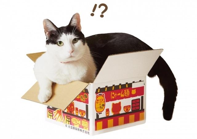 にゃーん麺の箱に入ったイメージ