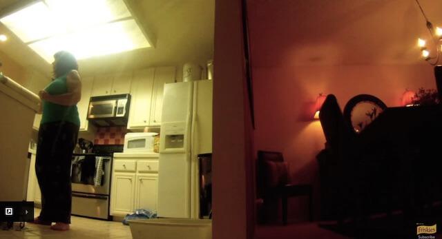 片付け フリスキーによる猫目線のカメラ動画