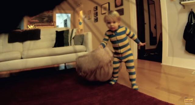 子供再登場 フリスキーによる猫目線のカメラ動画