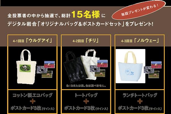 投票した人の中から抽選で15名の方にオリジナルバッグ(非売品)がプレゼント