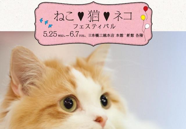 日本橋三越本店「ねこ・猫・ネコ フェスティバル」