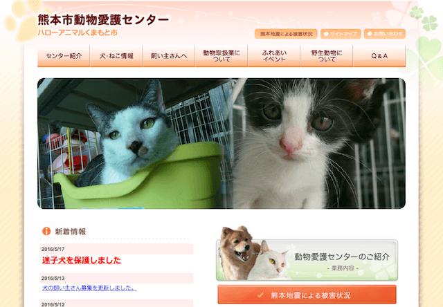 熊本市動物愛護センター、入院時に被災者の犬猫を無償預かり