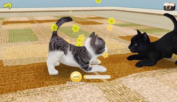 猫同士で遊ぶ(てのひらニャンコ)
