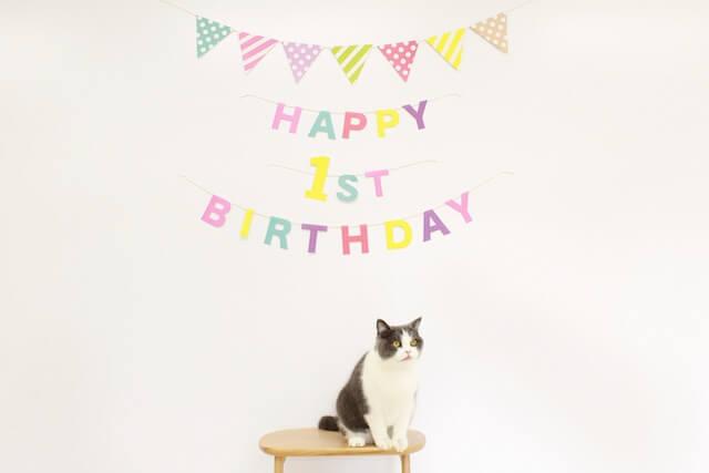 まる美ちゃんの1歳の誕生日会