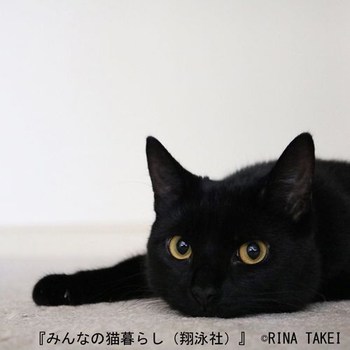 Rina TakeiさんのInstagram
