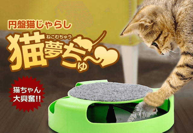 Amazonが猫や犬のストレス解消グッズTop5を公開