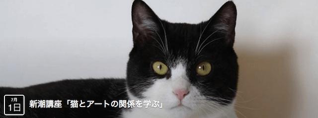 猫とアートの関係を学ぶ