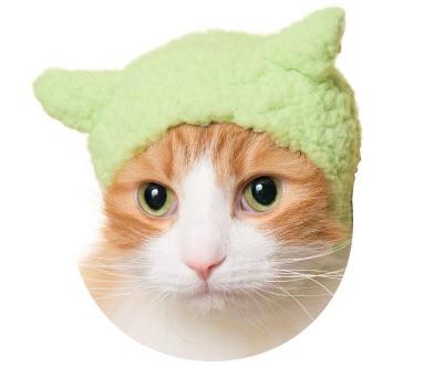 猫のかぶりもの、親ひつじ(すっきりグリーン)