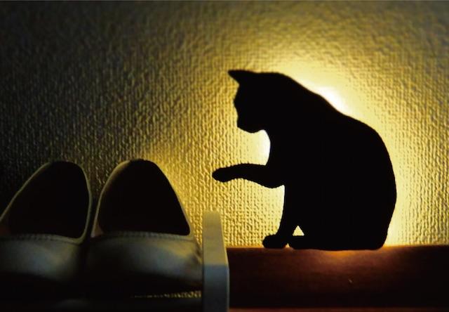 猫のシルエットが浮かび上がる、キャットウォールライト