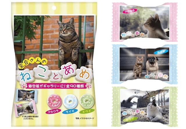 岩合さんの猫写真が包み紙,「ねことあめ」がローソンで発売中