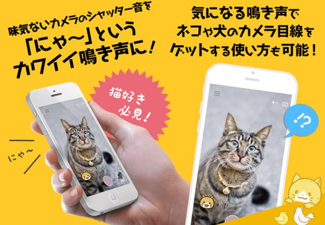 シャッター音がネコの鳴き声になるアプリ「にゃんこカメラ」