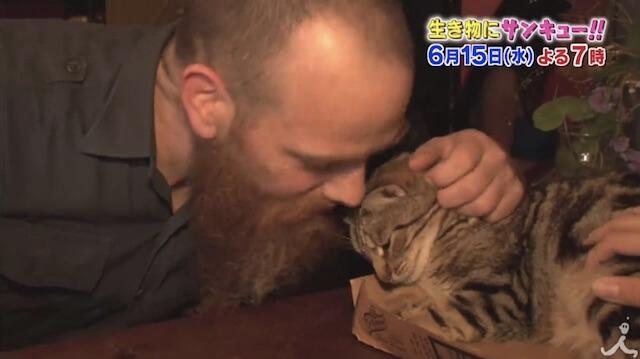 イギリス人の猫への情熱的な愛情表現