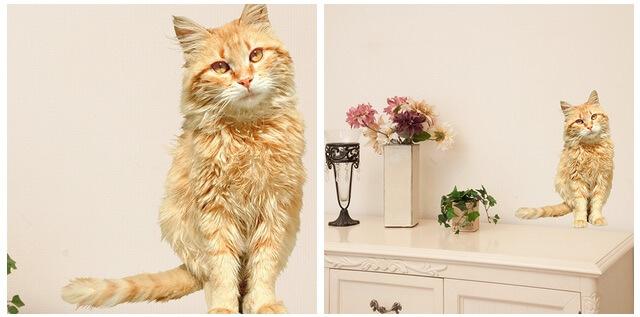 エレガントな猫(ねこウォールステッカー)
