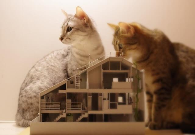 マウハウス世田谷の模型1