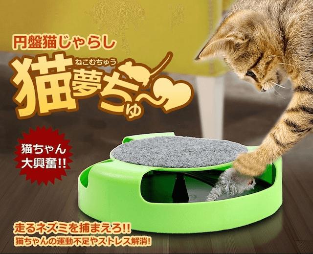 円盤猫じゃらし 猫夢ちゅ~