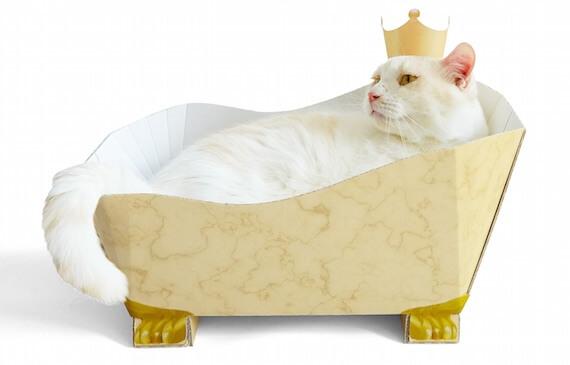 王冠を戴きながら入浴
