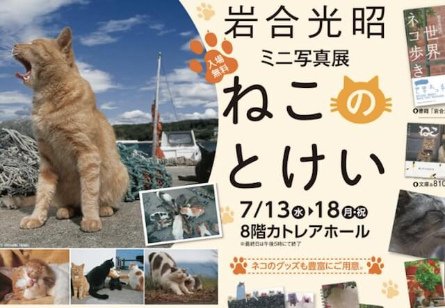 岩合光昭ミニ写真展「ねこのとけい」、7/13-7/18に熊谷で開催