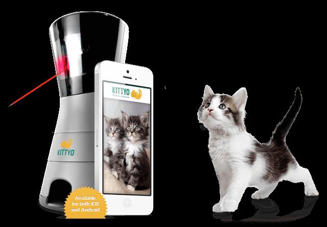 遠隔操作で猫と遊べる&給餌もできる「KITTYO」、日本企業が販売