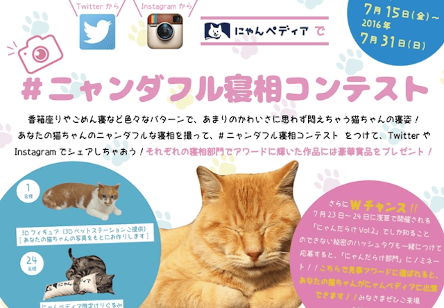 ニャンダフル寝相コンテスト