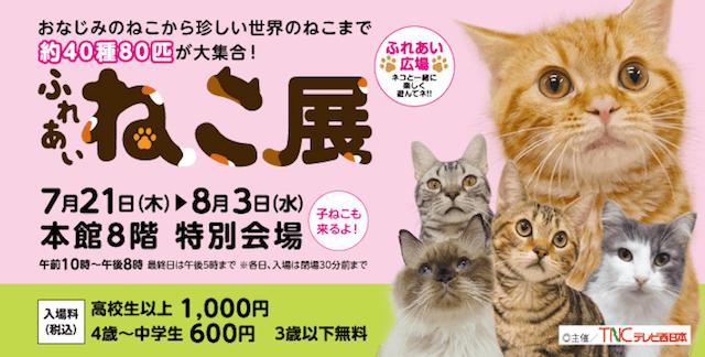 「ふれあい ねこ展」福岡