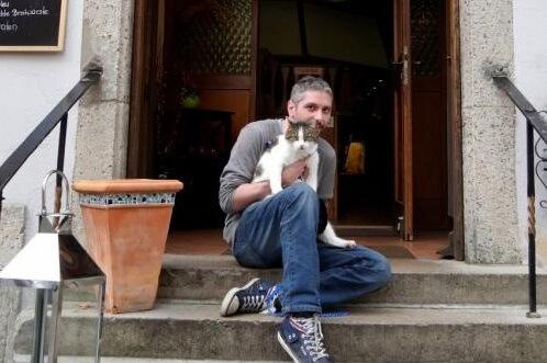 ロマンチック街道沿いの猫3