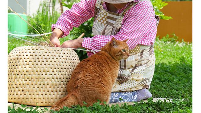 猫ちぐら作りと猫