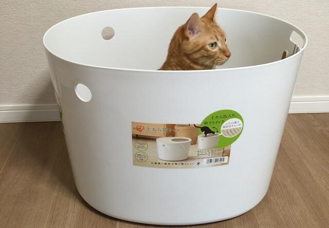 アイリスオーヤマの「上から猫トイレ」を使ってみた