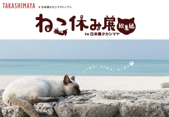 ねこ休み展 総集編、8/28まで日本橋タカシマヤで開催