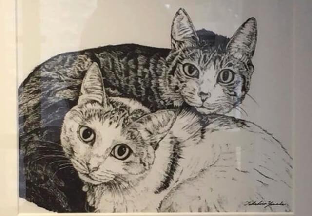 書籍紹介:猫をボールペンで描くとなぜこんなにも可愛いのか