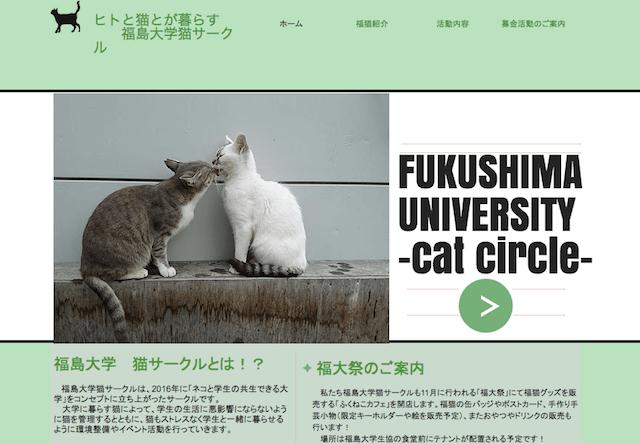 地域猫活動を行う福島大学のねこサークル「ふくねこ」