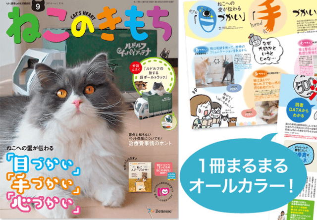 ねこのきもちの新規購読特典に、愛猫の写真入りオリジナルバッグ