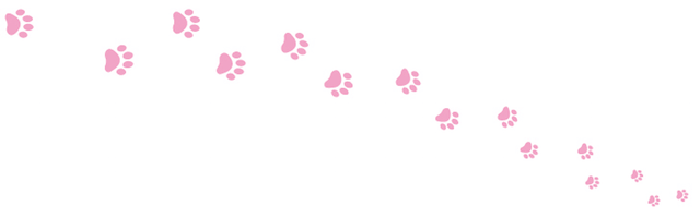 猫トイレットペーパー「やっぱり猫が好き」のロール柄