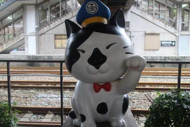 ホウトン駅の猫駅長