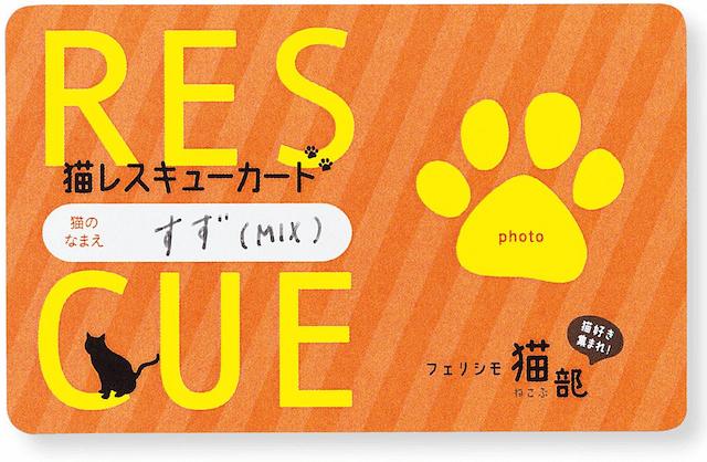 「猫レスキューカード」表