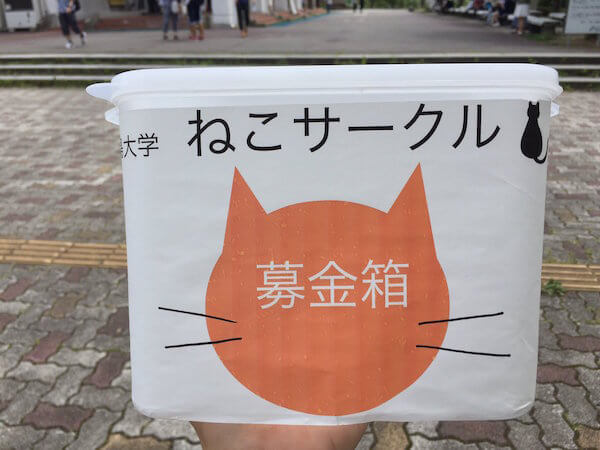 福島大学ねこサークルの募金活動