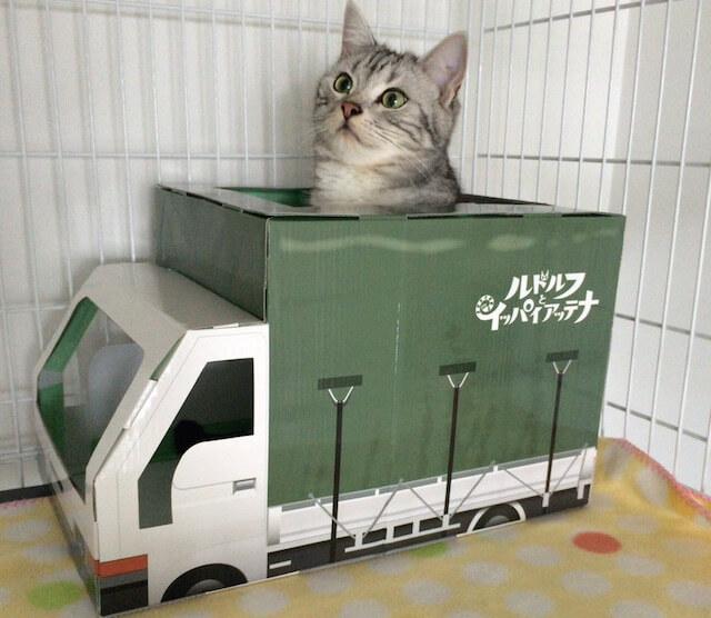 愛猫の秘密基地「ルドルフの旅する段ボールトラック」