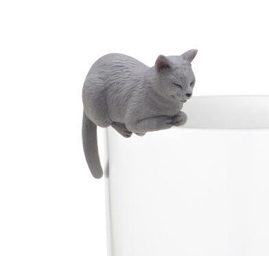ちょこんと座るグレー猫