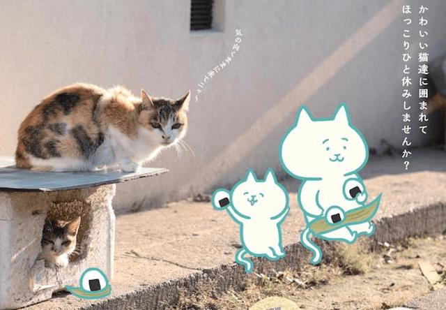 愛媛の猫島をテーマにした展覧会「にゃんとな猫島ふたり展」