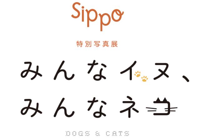 著名人の写真も展示、sippoのネコ&イヌ写真展が代官山で開催