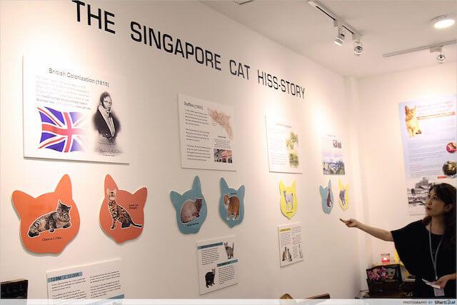 シンガポール初のネコ博物館(The Cat Museum, Muses & Mansion)