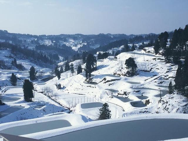 山古志村の冬景色、棚田