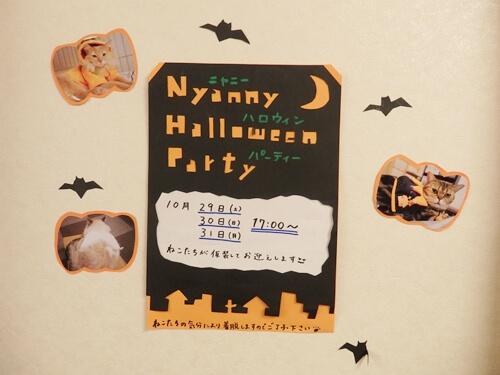 猫カフェ「cat cafe Nyanny(ニャニー)」のハロウィーンコスプレイベント2016