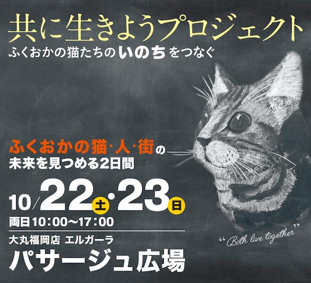 ふくおかの猫・人・街の未来を見つめる2日間!