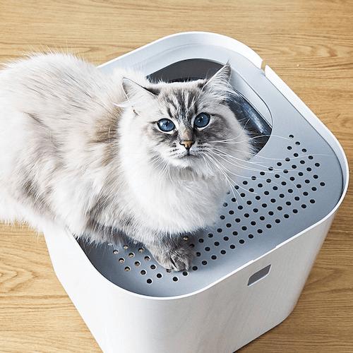 リビングに置いてもオシャレな猫トイレ「ModKat モドキャット」